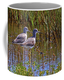 Coffee Mug featuring the photograph Yellowlegs Of Texas by Gary Holmes