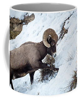 Coffee Mug featuring the photograph Yellowstone Bighorn by Michael Chatt