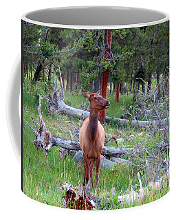 Yellowstone Moments. Doe Coffee Mug