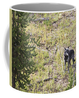 Coffee Mug featuring the photograph Yellowstone Wolf by Belinda Greb