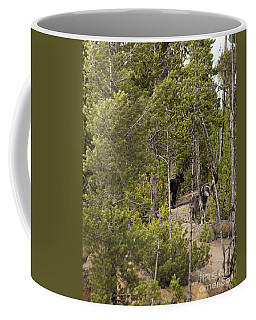 Coffee Mug featuring the photograph Yellowstone Wolves by Belinda Greb