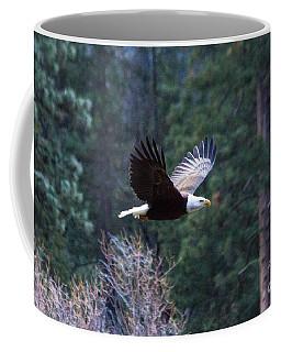 Yosemite Bald Eagle Coffee Mug
