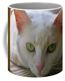 Coffee Mug featuring the photograph You Lookin At Me by Sherman Perry