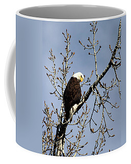 You Looking At Me? Coffee Mug