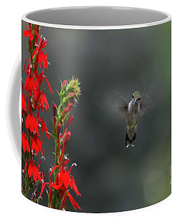 Coffee Mug featuring the photograph You Looking At Me by Judy Wolinsky