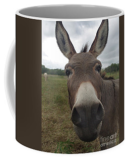 Coffee Mug featuring the photograph You Looking At My Woman by Peter Piatt