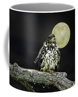 Coffee Mug featuring the photograph Young Bald Eagle By Moon Light by John Haldane