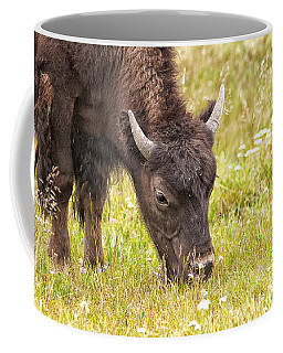 Coffee Mug featuring the photograph Young Bison by Belinda Greb