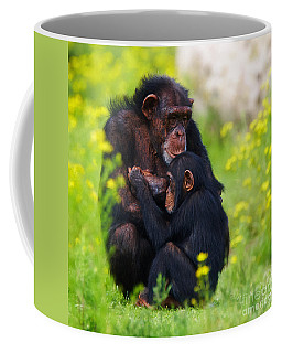 Coffee Mug featuring the photograph Young Chimpanzee With Adult - II by Nick  Biemans