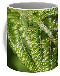 Young Fern Coffee Mug