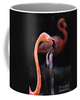 Young Flamingo Feeding Coffee Mug by Terry Garvin
