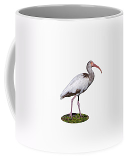 Coffee Mug featuring the photograph Young Ibis Gazing Upwards by John M Bailey