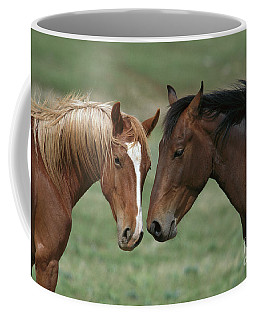 Young Mustang Bachelor Stallions Coffee Mug