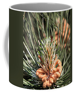 Coffee Mug featuring the photograph Young Pine Cone  by Ramabhadran Thirupattur