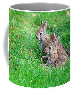 Coffee Mug featuring the photograph Young Rabbits by Nick  Biemans