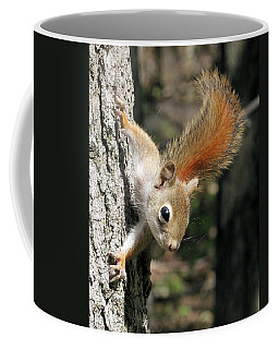 Young Red Squirrel Coffee Mug