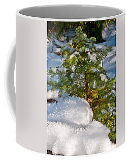 Young Winter Pine Coffee Mug