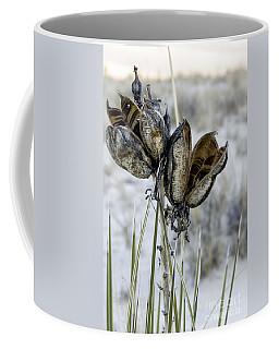 Yucca Seed Pods Coffee Mug