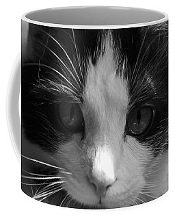 Coffee Mug featuring the photograph Yue Up Close by Andy Lawless