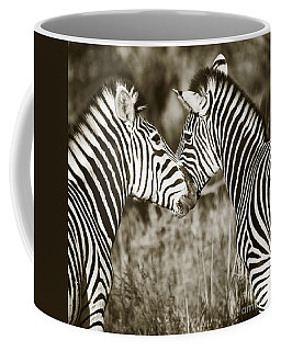 Coffee Mug featuring the photograph Zebra Affection by Liz Leyden