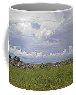 Zebra Panorama - 12x64 Coffee Mug