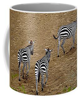 Zebra Tails Coffee Mug