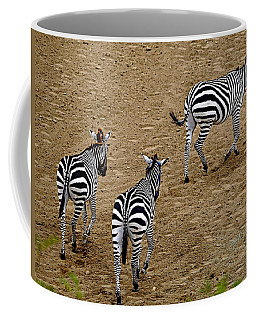 Zebra Tails Coffee Mug by AJ  Schibig