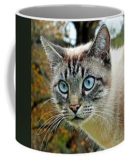 Zing The Cat Upclose Coffee Mug