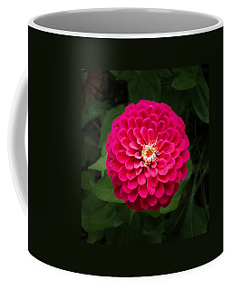 Zinnia In Bloom Square Coffee Mug