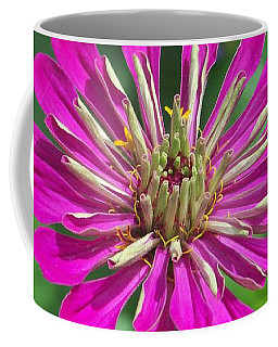 Coffee Mug featuring the photograph Zinnia Opening by Eunice Miller