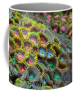 Zoanthids Coffee Mug
