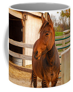 Zorse Coffee Mug by Mary Carol Story