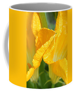 Zucchini Flowers In May Coffee Mug by Kume Bryant
