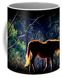Zuni In The Sunlight Coffee Mug