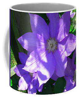 Coffee Mug featuring the photograph  Beautiful Shades Of Purple by Bruce Carpenter