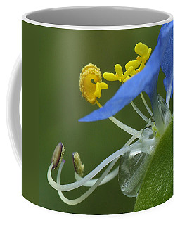 Close View Of Slender Dayflower Flower With Dew Coffee Mug