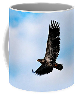 Coffee Mug featuring the photograph  Juvenile Bald Eagle by Peggy Franz