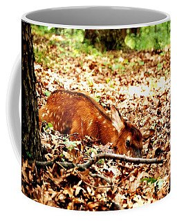 Coffee Mug featuring the photograph  Sweet Baby Elk by Peggy Franz