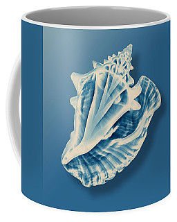 X-ray Of A Conch Shell Coffee Mug