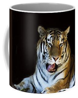 Awaking Tiger Coffee Mug