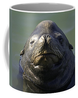 Coffee Mug featuring the photograph Big Face by Betty Depee