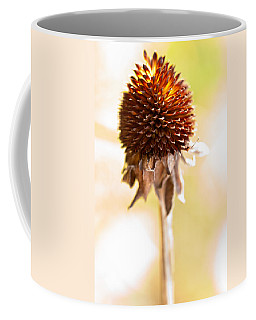 Black-eyed Susan After The Winter Coffee Mug