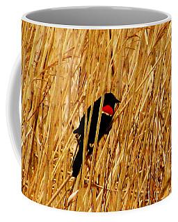 Blackbird In The Reeds Coffee Mug
