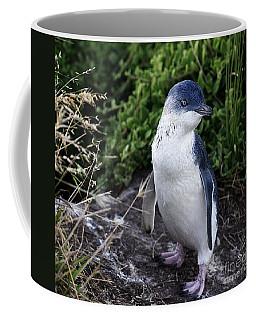 Fairy Penguin Coffee Mug