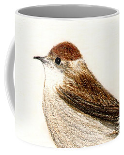 Coffee Mug featuring the drawing Female Blackcap  by Barbara Moignard