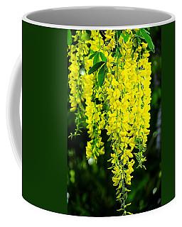 Golden Chain Tree Coffee Mug