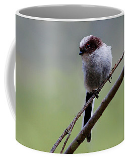 Long Tailed Tit Coffee Mug