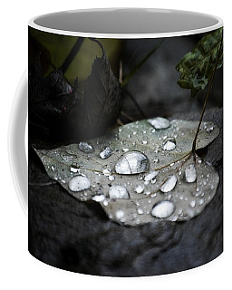 Coffee Mug featuring the photograph My Heart Weeps by Peggy Franz