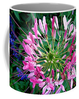 Coffee Mug featuring the photograph Pink Flower by Stephanie Moore