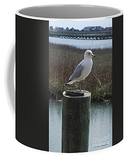 Posing Seagull Coffee Mug by Gordon Mooneyhan